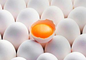 Лечение суставов яйцом