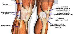 тендинит колено