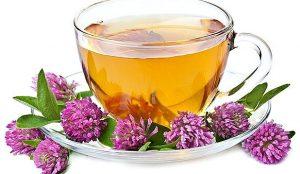клевер чай