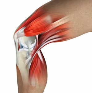 воспаление мышц колена