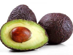 plod avokado